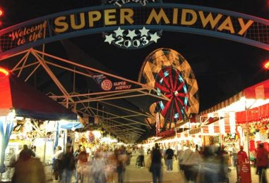 DART to the State Fair Survival Guide