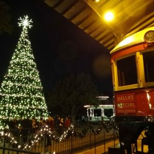 plano_tree_lighting