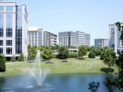 Working in Frisco is a Walk in the Park