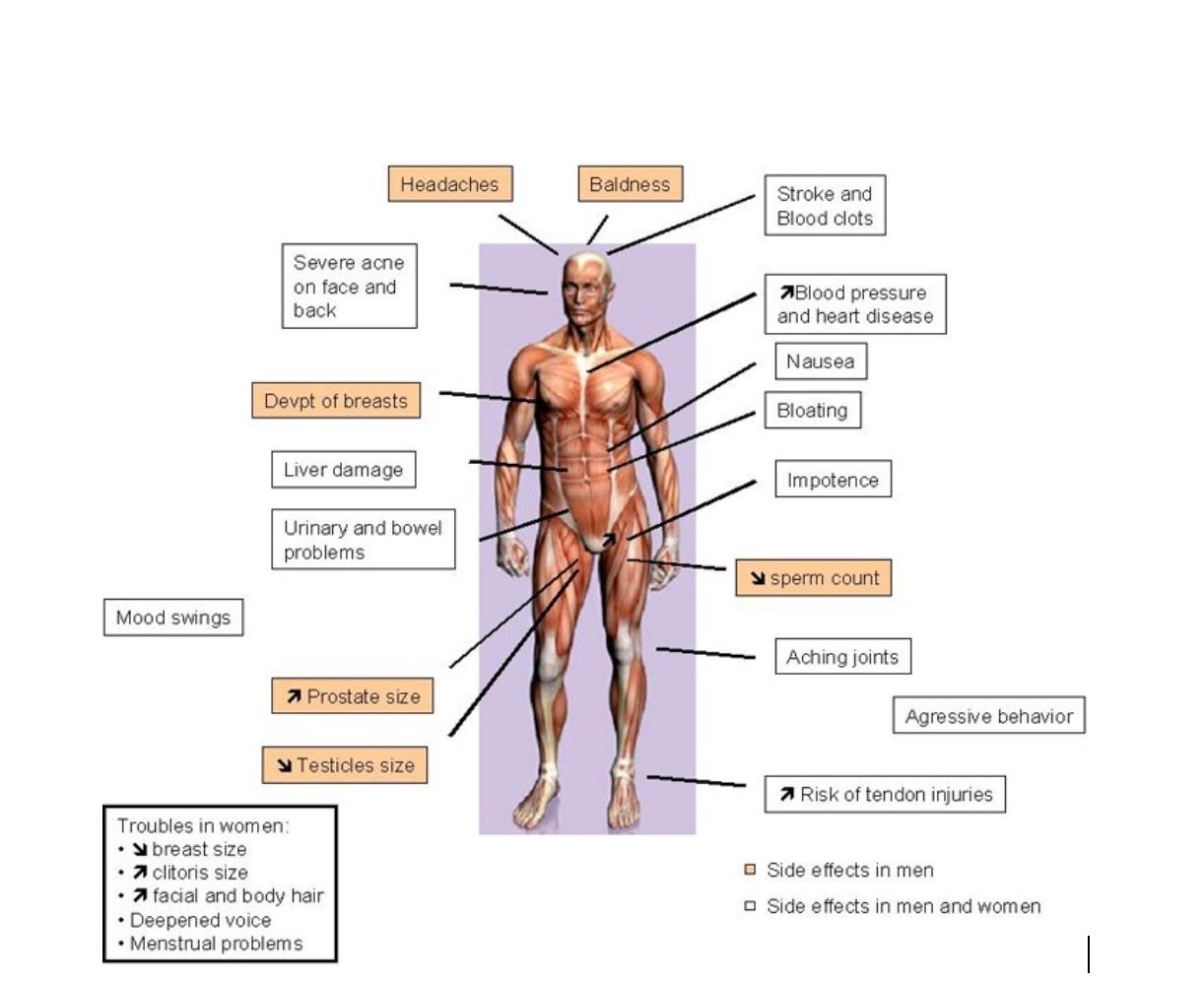 Steroid effects on men british pharmaceuticals lean gain